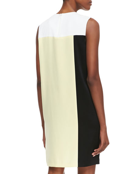 Sleeveless Colorblock Dress with Mesh Insert