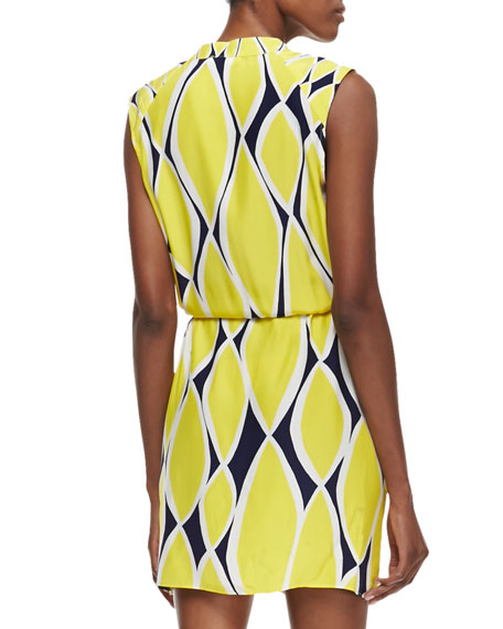 Chase Printed Drawstring-Waist Dress