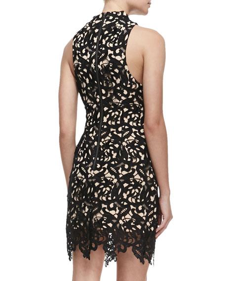 Fallen Love Cut-In Lace Dress