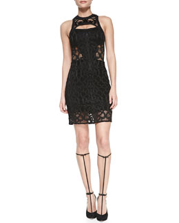 Alexis Dara Cutout Sleeveless Lace Dress