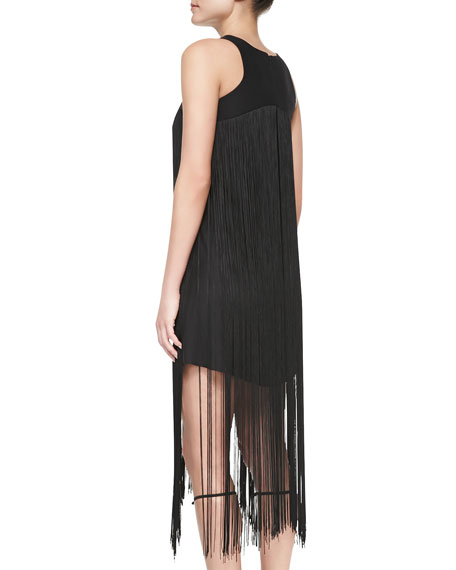 Vardenis Sleeveless Fringe-Overlay Dress