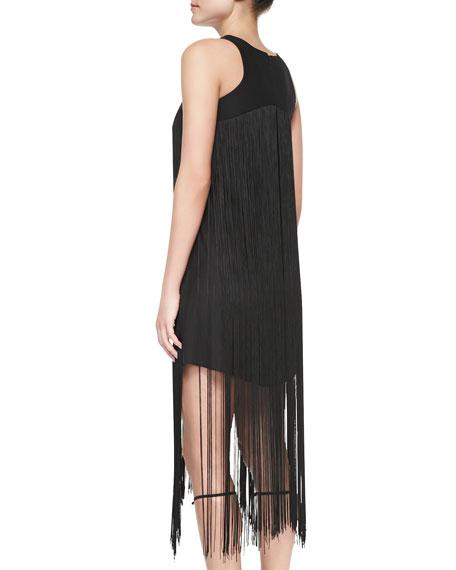Alexis Vardenis Sleeveless Fringe-Overlay Dress