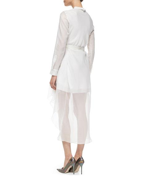 Diaz Silk Runway Long-Sleeve Dress