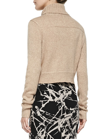 Tevin Cropped Turtleneck Sweater