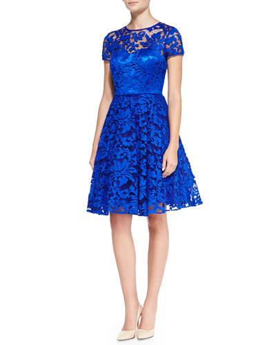 Ted Baker London Caree Floral Lace Fit-And-Flare Dress, Blue