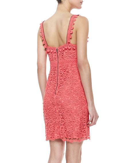 Precious China Lace Party Dress