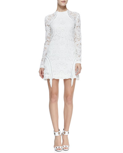 Alexis Darya Lace/Fringe Dress