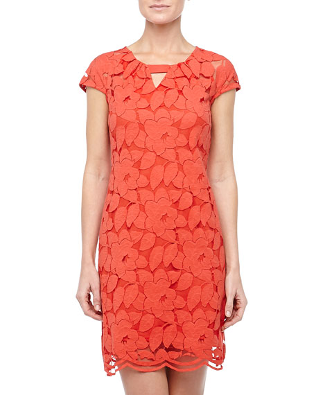 Floral-Lace Cap-Sleeve Dress, Poppy