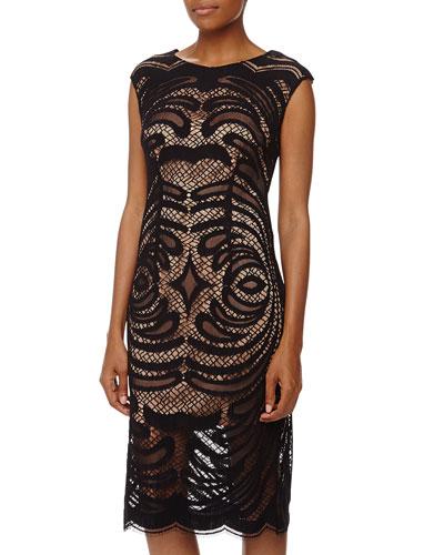 Alexia Admor Mirrored Lace Contrast Midi Dress, Black/Nude