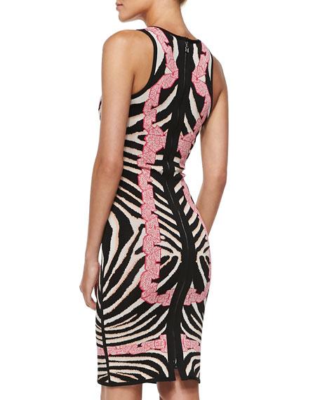 Behati Zebra-Jacquard Knit Dress