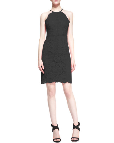 Trina Turk Parry Sleeveless Slim Lace Dress