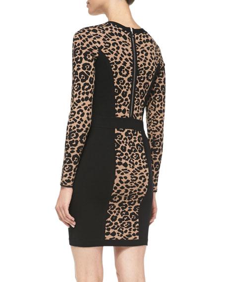 Cheetah/Solid Long-Sleeve Knit Sheath Dress
