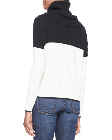 Colorblock Turtleneck Knit Sweater