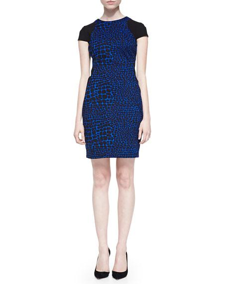 Odelia Colorblocked Reptile-Print Dress
