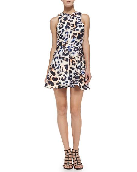 Sleeveless Fit & Flare Leopard-Print Dress