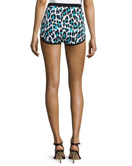 Leopard-Print Briefs, Aqua