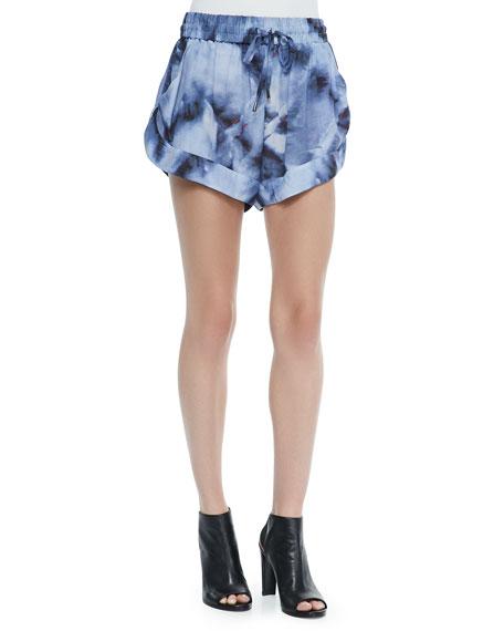 IRO Odilon Printed High-Leg Shorts