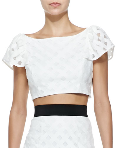 Milly Lattice Mesh Flounce Cropped Top