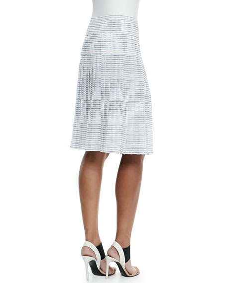Striped Pleated A-Line Skirt
