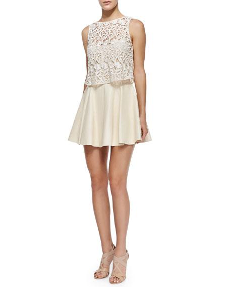 Alice + Olivia Julie Lace/Leather Swingy Dress
