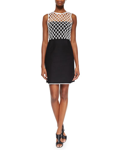 Leonora Netted Two-Tone Dress