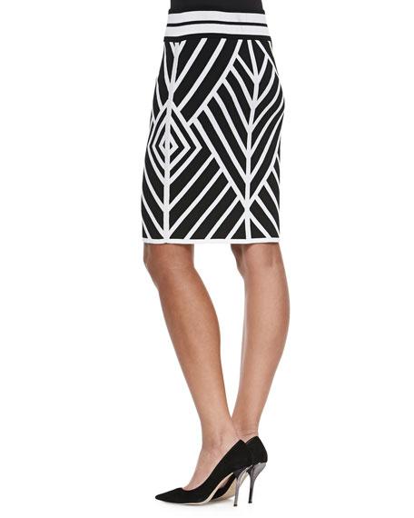 Yoana Baraschi Positive/Negative Reversible Pencil Skirt