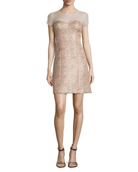 Phoebe Short-Sleeve Illusion Jacquard Dress