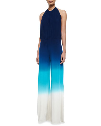 Paley Ombre Jersey Jumpsuit
