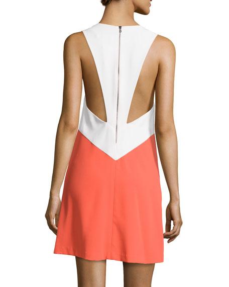 Maya Colorblock Trapeze Dress