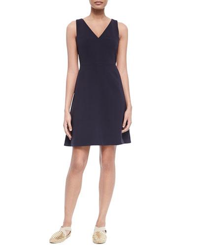 Sleeveless V-Neck Fit & Flare Dress