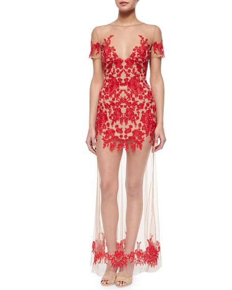 Luau Embroidered/Sheer Mesh Maxi Dress