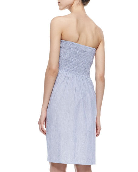 Chica Pinstripe/Embroidered Strapless Dress