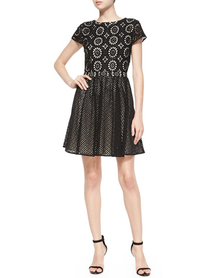 Alice + Olivia Sonny Embroidered Fit-and-Flare Dress