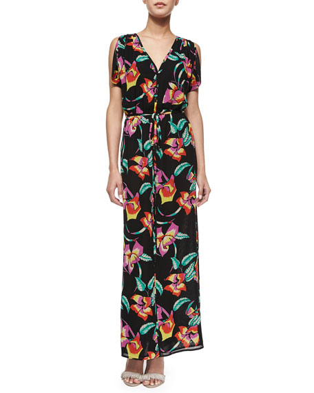 Joie Lunaria B Tropical-Print Maxi Dress