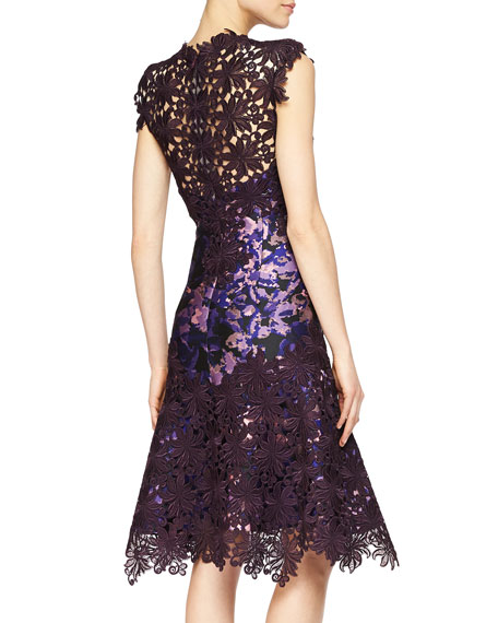 Guipure Lace-Illusion Printed Dress
