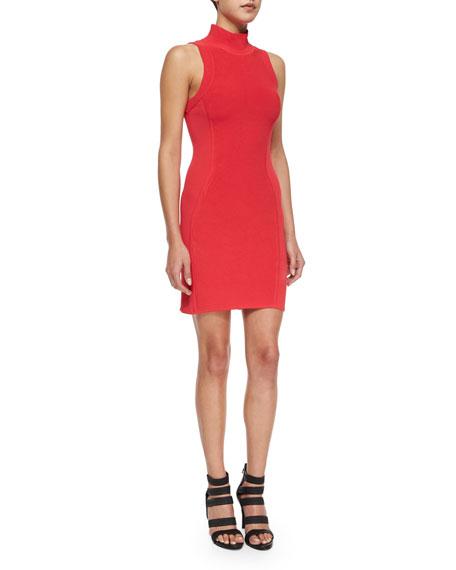 Parker Amy Sleeveless Turtleneck Dress, Rosebud