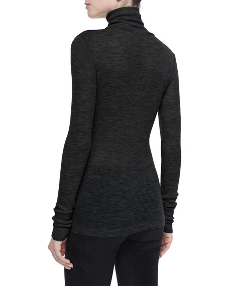 Sheer Wooly Ribbed Turtleneck