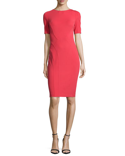 Ariel Body-Conscious Sheath Dress