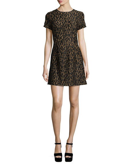Short-Sleeve Fitted Lace Dress, Black