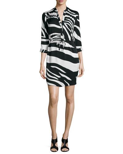 Diane von Furstenberg Freya Zebra-Print Drawstring Dress,