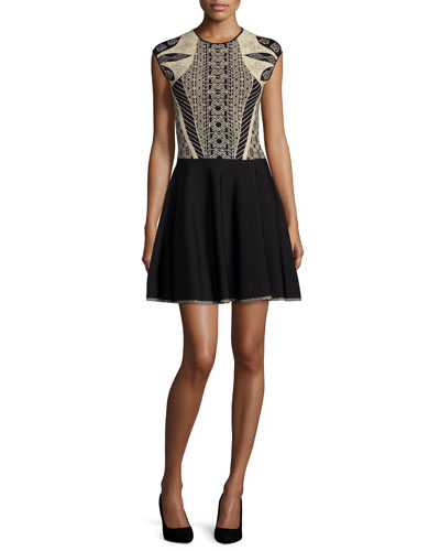 Jenkin Embroidered-Top Skate Dress, Black