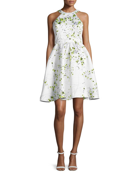 Parker Christine Fit & Flare Printed Dress