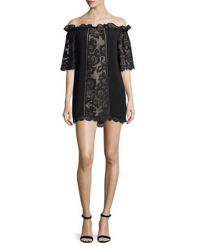 Egle Lace & Chiffon Off-the-Shoulder Mini Dress, Black