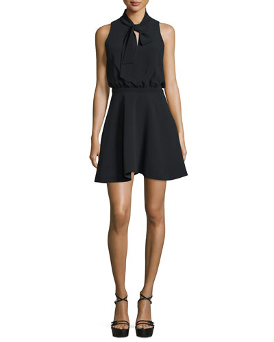 Enya Sleeveless Fit-&-Flare Dress, Black