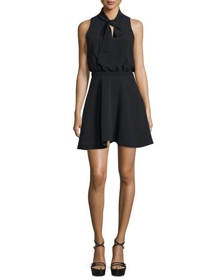 Elizabeth and James Enya Sleeveless Fit-&-Flare Dress, Black