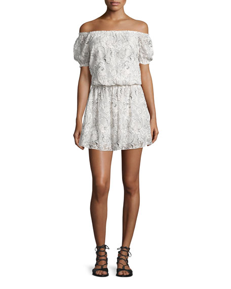 Janell Off-the-Shoulder Silk Lace Dress, White/Black