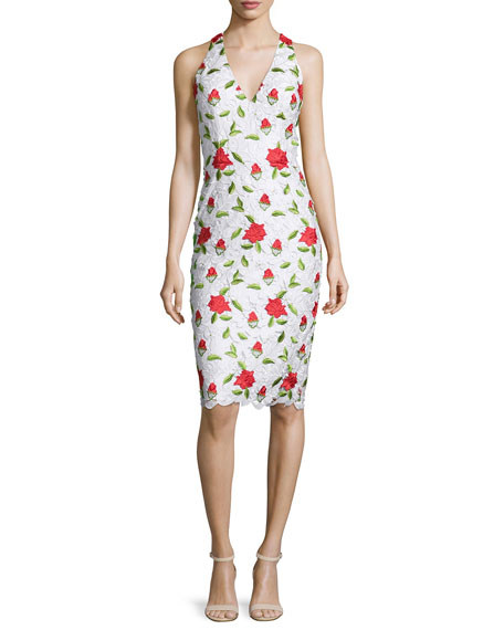 David Meister Sleeveless Floral-Embroidered Cocktail Dress, Multi