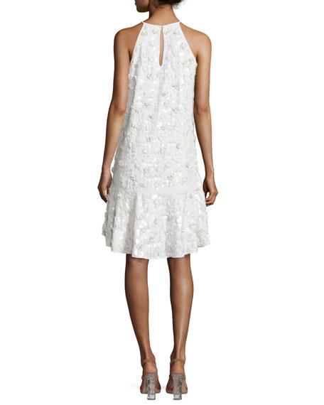 Kera Sleeveless Floral-Embroidered Dress, Ivory