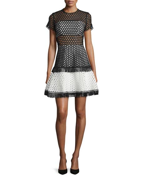 Cinthia Short-Sleeve Eyelet Mesh Mini Dress, Black/White