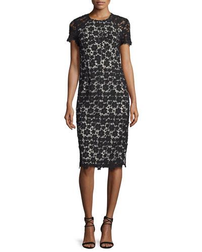 Short-Sleeve Lace Sheath Dress, Black/Ivory
